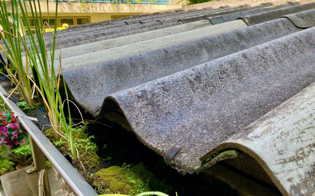 How Gutter Mesh Helps Keep Noisy Pests At A Distance