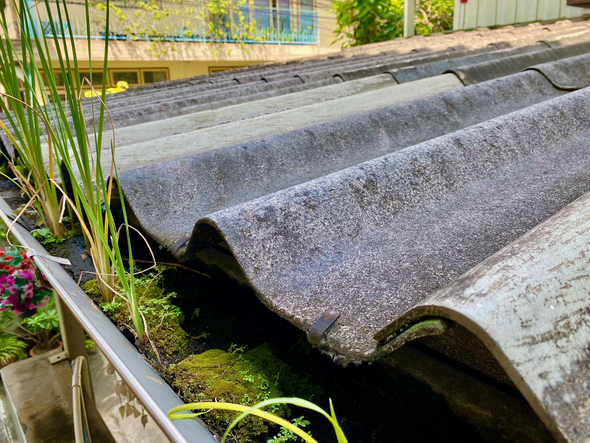 How Gutter Mesh Helps Keep Noisy Pests At A Distance | King Ground